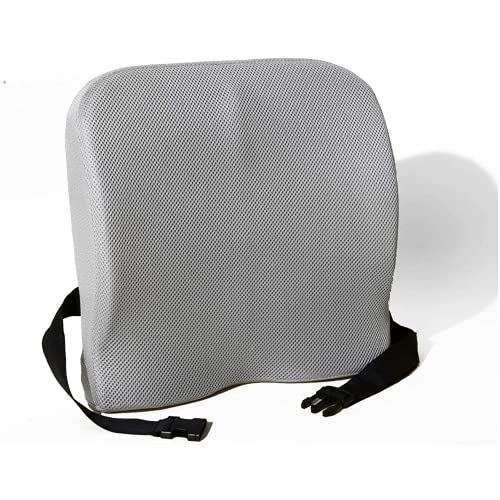 Coop Home Goods - Lumbar Support Back Cushion - Helps Relieve Lower Back Pain - Colling Back Pillow for Office Chair, Car Seat - Bamboo Charcoal Memory Foam - Adjustable Strap - Breathable Mesh - Gray