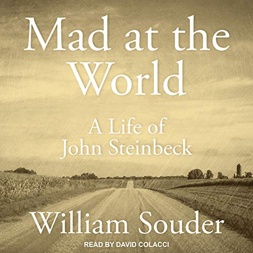 Mad at the World Audiobook By William Souder cover art