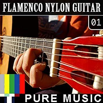 Flamenco Nylon Guitar, Vol. 1