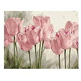 Kits de pintura de diamantes DIY 5D, bordado de diamantes de imitación de cristal de tulipanes rosados, decoración de dormitorio de sala de estar de la pared del hogar (45 * 35 cm)