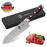 Lionex Kochmesser Küchenmesser Japanisch Santoku Messer aus VG-10 Damaststahl, mit ergonomischem G10 Griff, exquisite Geschenkverpackung,extra Scharf