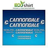 Ecoshirt M9-PP3Q-MG02 Pegatinas Stickers Cuadro Frame Cannondale Scalpel Am26 Aufkleber Decals Adesivi Bike BTT MTB Cycle, Plata