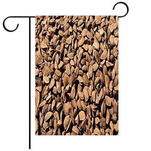 Artistically Designed Yard Flags, Double Sided Close up of Brazil Nuts for Sale in a Local Market in The Amazon Best for Party Yard and Home Outdoor Decor
