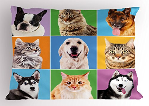 Ambesonne Animal Pillow Sham by, Cute Various Dog and Cat Portraits Puppies Kittens Pet Company Funny Humor Design, Decorative Standard Size Printed Pillowcase, 26 X 20 Inches, Multicolor