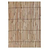 "Gardman R668 Reed Fencing, 13' Long x 6' 6"" High"