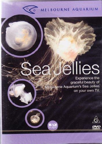 Melbourne Aquarium: Sea Jellies
