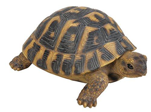 Vivid Arts XRL-HERM-B Griechische Landschildkröte Schildkröte, Kunstharz Gartendeko