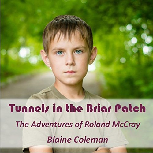 Tunnels in the Briar Patch audiobook cover art