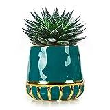 Plant Pots, JUMPHIGH 4.9 Inch Modern Nordic Style Ceramic...