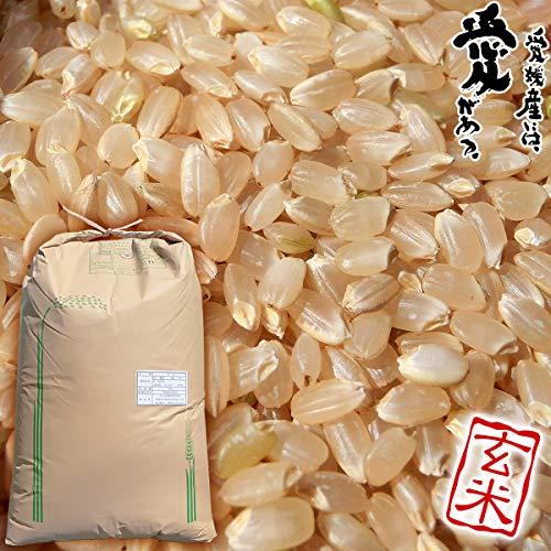 三間米 コシヒカリ 玄米 30 kg 一等米 単一原料米 愛媛県 宇和島市 三間 町産 えひめ の おこめ ブランド 米 みま まい げんまい