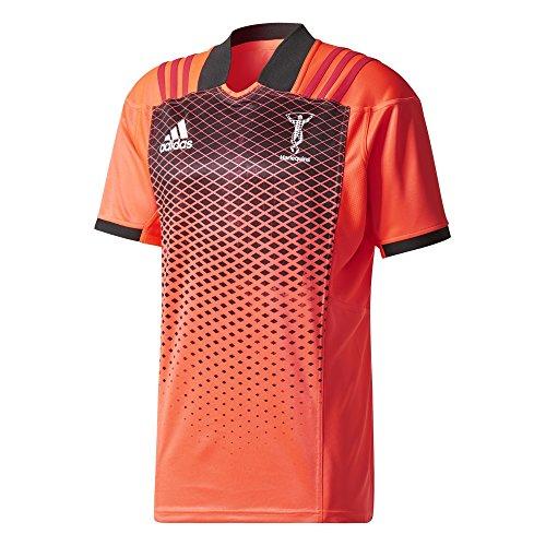 adidas Herren Harlequins Trainingsshirt Trikot, Pop/Black/Redbea, XL