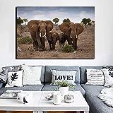 ganlanshu Pintura de Lienzo Paisaje Arte de la Pared Pintura de Rancho Africano decoración de la Pared Familia del Elefante,Pintura sin Marco,80X120cm