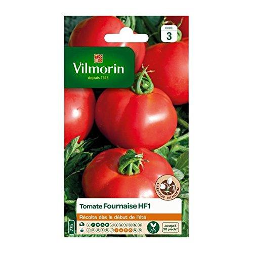 VILMORIN Tomate Fournaise HF1 Sachet de graines - Création Vilmorin