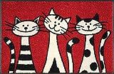 Wash+Dry 030812 Fußmatte Three Cats 50 x 75 cm