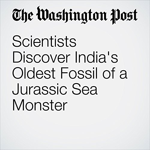 Scientists Discover India's Oldest Fossil of a Jurassic Sea Monster copertina