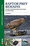 Raptor Prey Remains: A Guide to Identifying What's Been Eaten by a Bird of Prey (Pelagic Identification Guides)