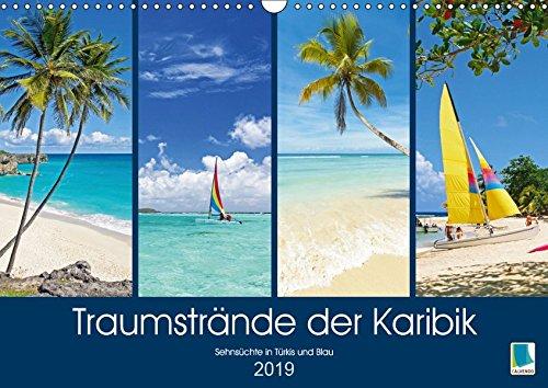 Traumstrände der Karibik (Wandkalender 2019 DIN A3 quer): Karibik: Sehnsüchte in Türkis und Blau (Monatskalender, 14 Seiten ) (CALVENDO Orte)