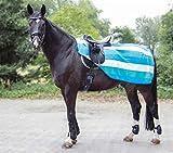 HKM 567543 Nieren Abschwitzdecke Colour stripes mit Klett, L