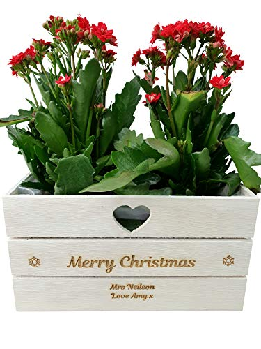 Personalised Engraved Christmas Planter Plant Pot Lined Wooden Heart Vintage Any Message