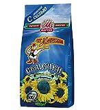 Premium Roasted Sunflower Seeds by Mr.Martin (Ot Martina) Sea Salted 500G