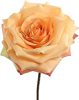 Floral Home Peach Apricot Silk Open Rose Spray - 20