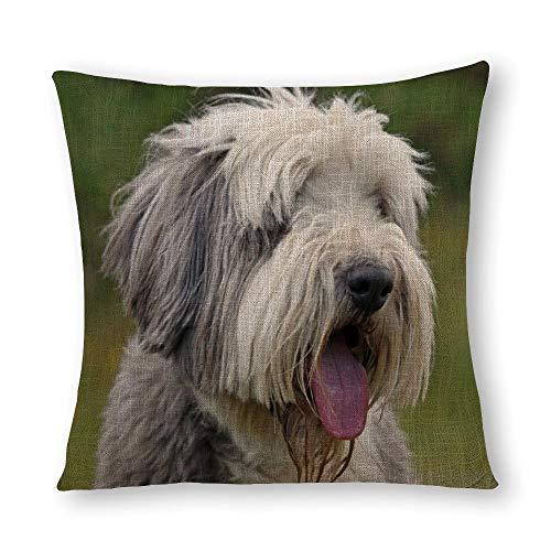 Perfecone - Funda de almohada de algodón para el hogar, diseño de carlino y perro, 60 x 60 cm