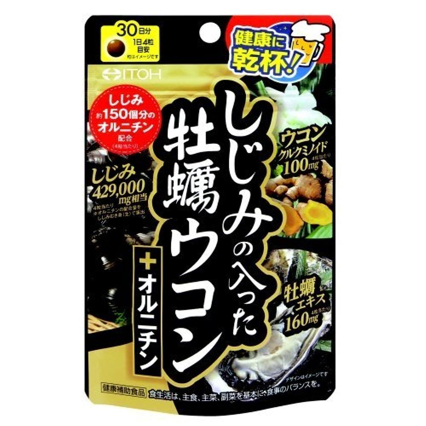空中送った幻滅井藤漢方製薬 しじみの入った牡蠣ウコン+オルニチン 120粒 Japan