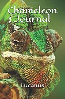 Chameleon Journal: Chameleons Are Awesome, Gecko, Iguana, Small Dragon, Lizard Journal To Write In, Lined Notebook For Sch...