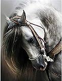 Pintar por Numeros Animal elegante caballo blanco DIY Cuadro al óleo con números para Kit de Pintura al óleo Digital para Adultos y niños de Lienzo decoración para el hogar 40x50cm Sin Marco