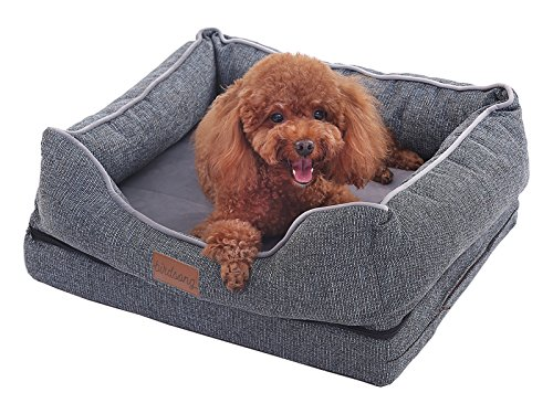 PLS Pet Birdsong Orthopedic Dog Bed with Bolster