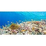AWERT Fondo de acuario de 180 x 46 cm Coral Tropical Fish Tank Fondo de vinilo duradero (no adhesivo)