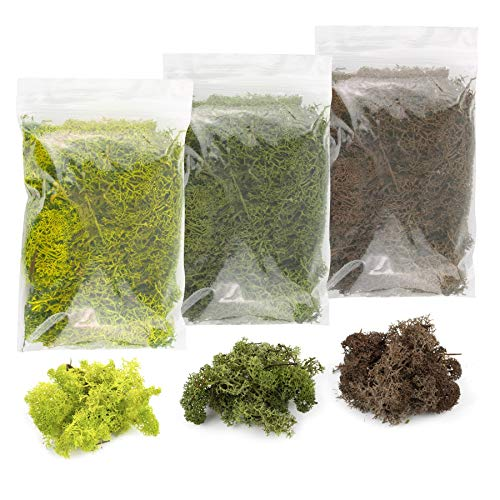 War World Scenics Lichen Moss Model Foliage Multi-Pack 3 x 20g (Light Green, Dark Green, Brown) –Railway Modelling Wargame Basing Scenery Landscape Trees Bushes Hedges Diorama