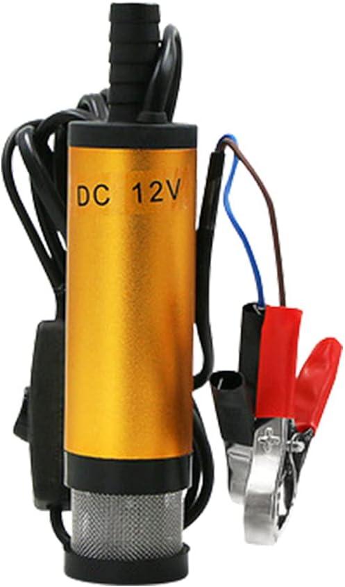 Bomba de aceite eléctrica multifuncional, mini bomba sumergible eléctrica portátil de 12 V 24 V CC, bomba de transferencia de combustible diésel con filtro (12V)