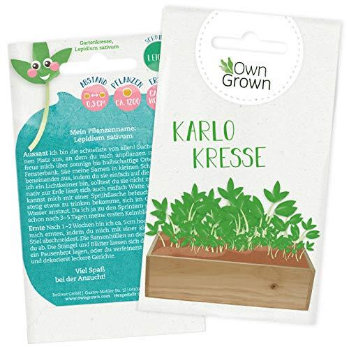 Garten Kresse Samen: Premium Gartenkresse Samen für Kinder u. Erwachsene – Kräuter Samen mit 1200x Kressesamen Kinder – Kresse Karlo – Sprossen Samen, Kräuter Saatgut, Keime und Sprossen von OwnGrown