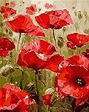 N/W Lienzo DIY Pintura Al Óleo Manualidades para Pintar Pintura por Numeros Adultos Niños - Rojo, Flores, Amapolas, Plantas 40X50Cm
