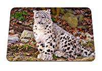 22cmx18cm マウスパッド (ユキヒョウカブの葉秋) パターンカスタムの マウスパッド