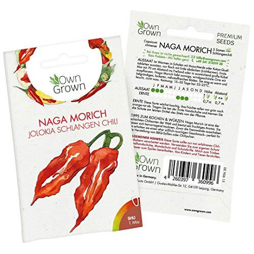 Chili Samen Naga Morich: 5 Premium Naga Morich Samen zum Anbau von Chili Pflanzen für Balkon und Garten – Chilli Samen extrem scharf für die Anzucht frischer Jolokia Chili, von OwnGrown