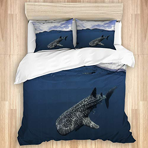 Aliciga Decorative Duvet Cover Set,a whale shark swimming near the surface Cenderawasih Bay West Papua Indonesia,Microfibre 135x200 with 2 Pillowcase 50x80,Single