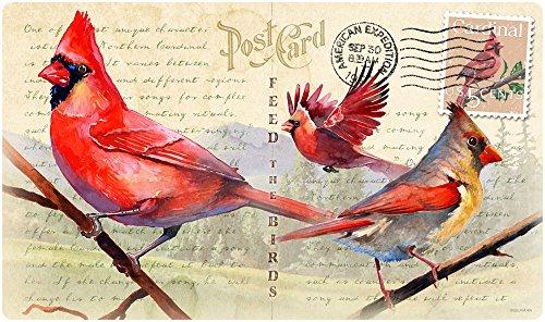 Vintage Bird Series Tempered Glass Cutting Board (Northern Cardinal)