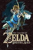 Póster de la leyenda de Zelda Breath of The Wild (28 x 43 cm), 280 mm x 430 mm, acabado esmerilado, material de regalo decorativo para pared
