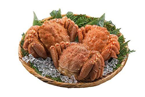 北海道産 毛ガニ三昧(冷凍) 1kg 最高ランク 蟹味噌