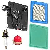 JJDD - Cartuccia di ricambio per filtro dell'aria piatta con tappo di accensione 795259 per aspirapolvere Briggs & Stratton 792040 691753 496116