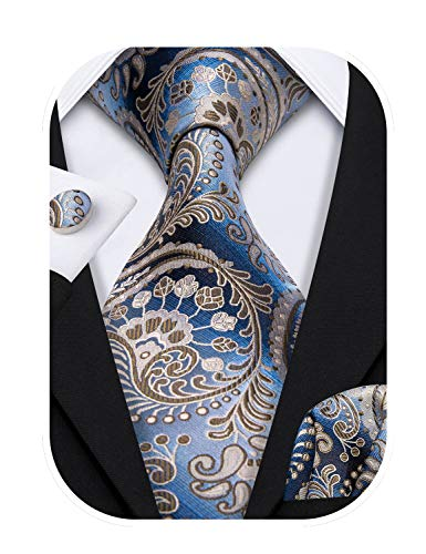 Barry.Wang Paisley Tie Set Hanky Cufflinks Woven Silk Necktie,Blue and Brown,One Size