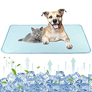 Lewondr Washable Pet Summer Cooling Mat, 47″x27″ Reusable Dog Self Cooling Blanket Pad Waterproof Non-Slip Sleep Mat for Small Medium and Large Pet Outdoor or Home Use – Blue
