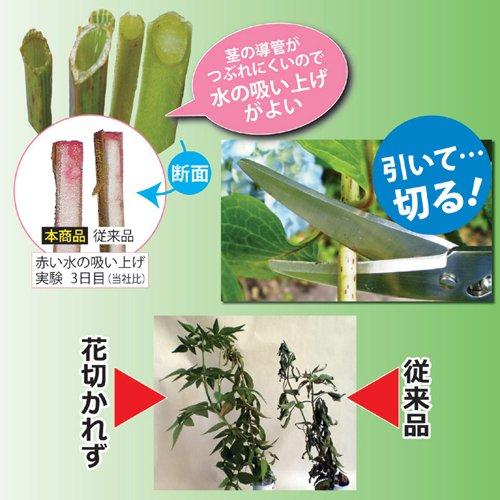 兼松工業花切専用ハサミ「花切かれず」808338兼松工業