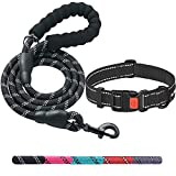 Ladoogo Heavy Duty Dog Leash - Comfortable Padded Handle, 5 ft Long - Dog Leashes for Small Medium Large Dogs (Leash+Collar L Neck 20'-25', Black)