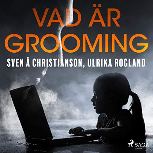 Vad är grooming audiobook cover art