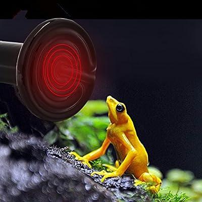 Reptile Heating Light, 2Pcs Infrared Ceramic Light Bulb Lamp for Tortoise Lizard Snake amphibians Small Animal Pet 110V