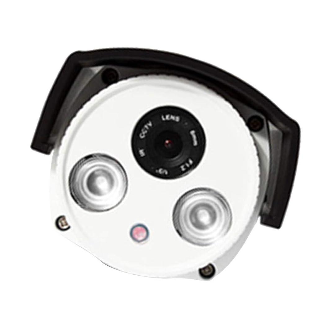 石灰岩適切に消すD DOLITY 防犯カメラ 赤外線カメラ アナログカメラ 夜間 2.8mm 高精細レンズ 防水