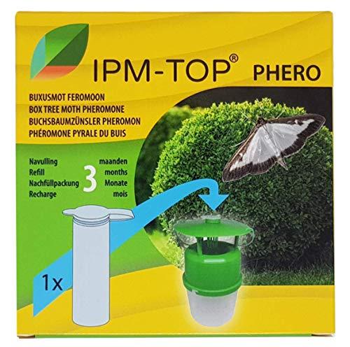 IPM-TOP Feromona de polillas de árbol de caja (Cydalima perspectalis) - Recarga - Activo durante 3 meses - Trampa no incluada
